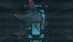 Plated Parasite (Frigate Orpheon).png