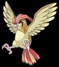 Pokemon 017Pidgeotto.png