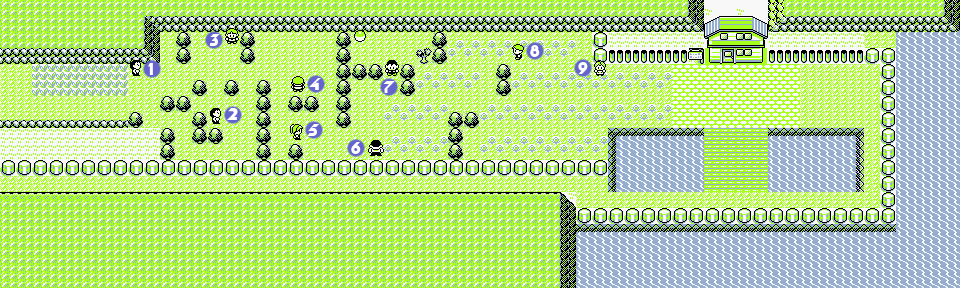 Pokemon RBY Route25.png