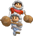 SSBM Trophy Ice Climbers Smash2.png