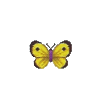ACWW YellowButterfly.png