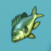 Aquaria fish-01.png