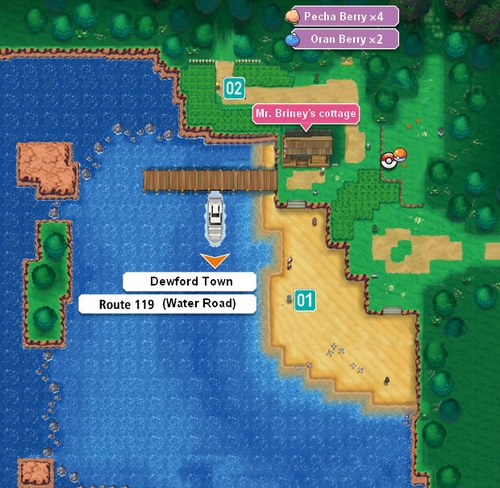 Pok 233 Mon Omega Ruby And Alpha Sapphire Route 104 South