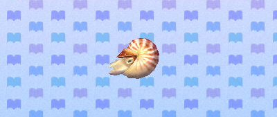 ACNL chamberednautilus.png