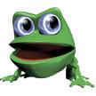 OOT eyeballfrog.jpg