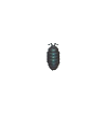 ACWW Pillbug.png