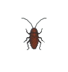 ACWW Cockroach.png