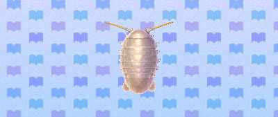 ACNL giantisopod.png