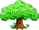 SSBM Trophy Whispy Woods.png