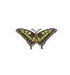 ACWW TigerButterfly.png