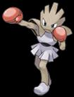 Pokemon 107Hitmonchan.png