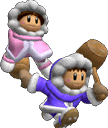 SSBM Trophy Ice Climbers Smash1.png