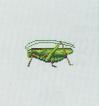 ACWW Grasshopper.png