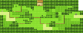 Pokemon GSC Route29.png