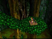 Banjo-Kazooie Bubble Gloop Swamp Witch Switch 1.jpg