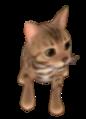 Petz  Cat