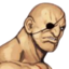 Portrait CVS Sagat.png