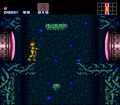 Super Metroid Walkthrough Brinstar First Room.png