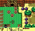 TLoZ LW Bottle Grotto.png