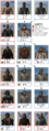 Mount&Blade Mercenary troop tree.png