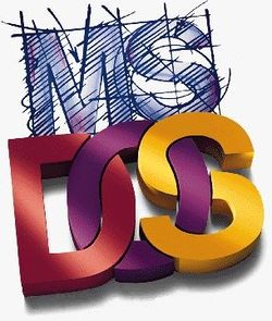 The console image for MS-DOS.