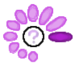 Purple Search Meter.