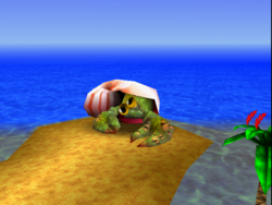 Banjo-Kazooie Treasure Trove Cove Nipper's Beach.png