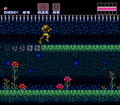 Super Metroid Walkthrough Brinstar Noob Bridge.png