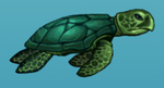 Aquaria turtle.png