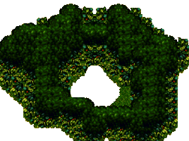 Forest Maze.png