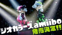 Squid Sisters Amiibo announced Japanese.jpg