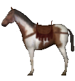 Mount&Blade horse Saddle Horse2.png