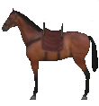 Mount&Blade horse Hunter.png