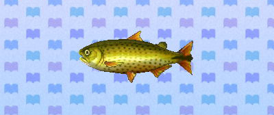 Animal Crossing New Leaffish Strategywiki The Video Game