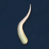 Spore cell flagella.png