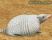 Your work list - Page 2 Mabinogi_Monster_White_Armadillo