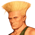 Portrait CVS Guile EX.png