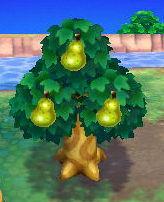 Animal Crossing New Leafgardening Strategywiki The Video Game
