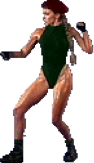 Street Fighter The Movie Cammy Strategywiki The Video Game