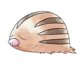 Pokemon 220Swinub.png