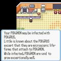 Pokemon RSE Pokerus desc.jpg