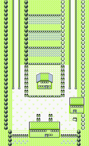 Pokémon Red and Blue/Route 5-6 — StrategyWiki, the video game