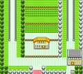 Pokemon GSC map Route 5.png