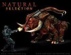 Box artwork for Natural Selection.