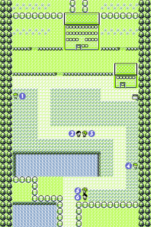 Pokémon Red and Blue/Route 5-6 — StrategyWiki, the video