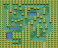 Pokemon FRLG Berry Forest.png