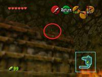 The Legend of Zelda: Ocarina of Time/Gold Skulltulas