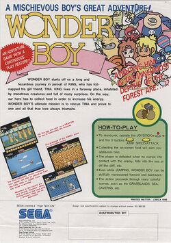 Box artwork for Wonder Boy.