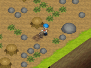 Harvest Moon 64/Glitches — StrategyWiki, the video game