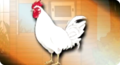 Danganronpa bullet Chicken Coop Chickens.png